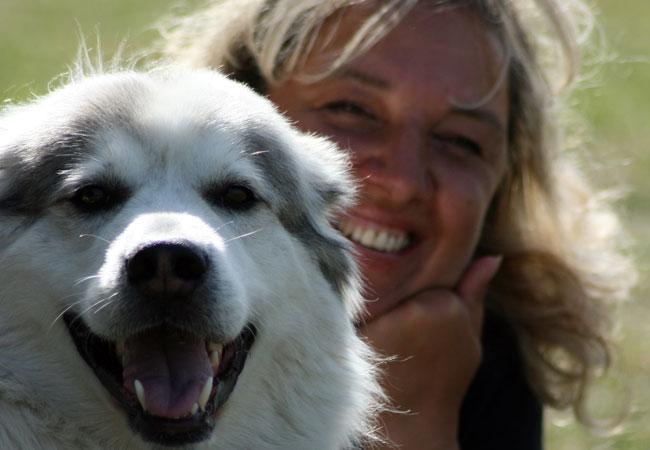 Tierschutzgesetz Paragraph 11