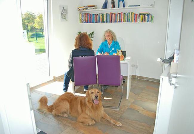 Training und Kurse Frau mit Hund beim Erstgespräch