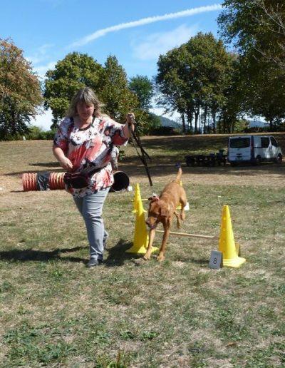Hundebadetag Cuppamara 2018.(23)