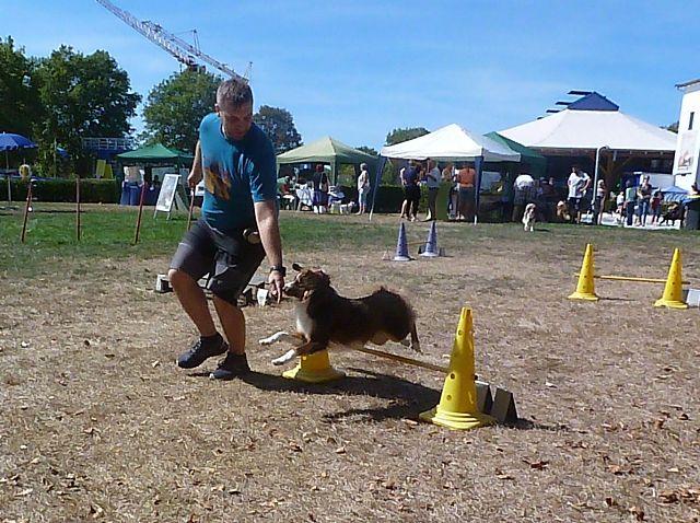 Hundebadetag Cuppamara 2018.(27)