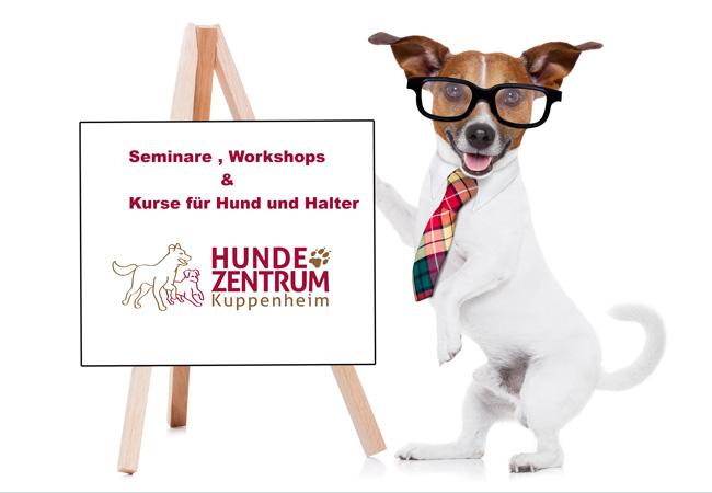 Seminare, Workshops und Kurse Hund an der Tafel