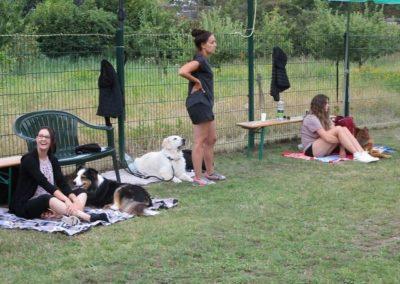 Hunde und Halter in Warteposition